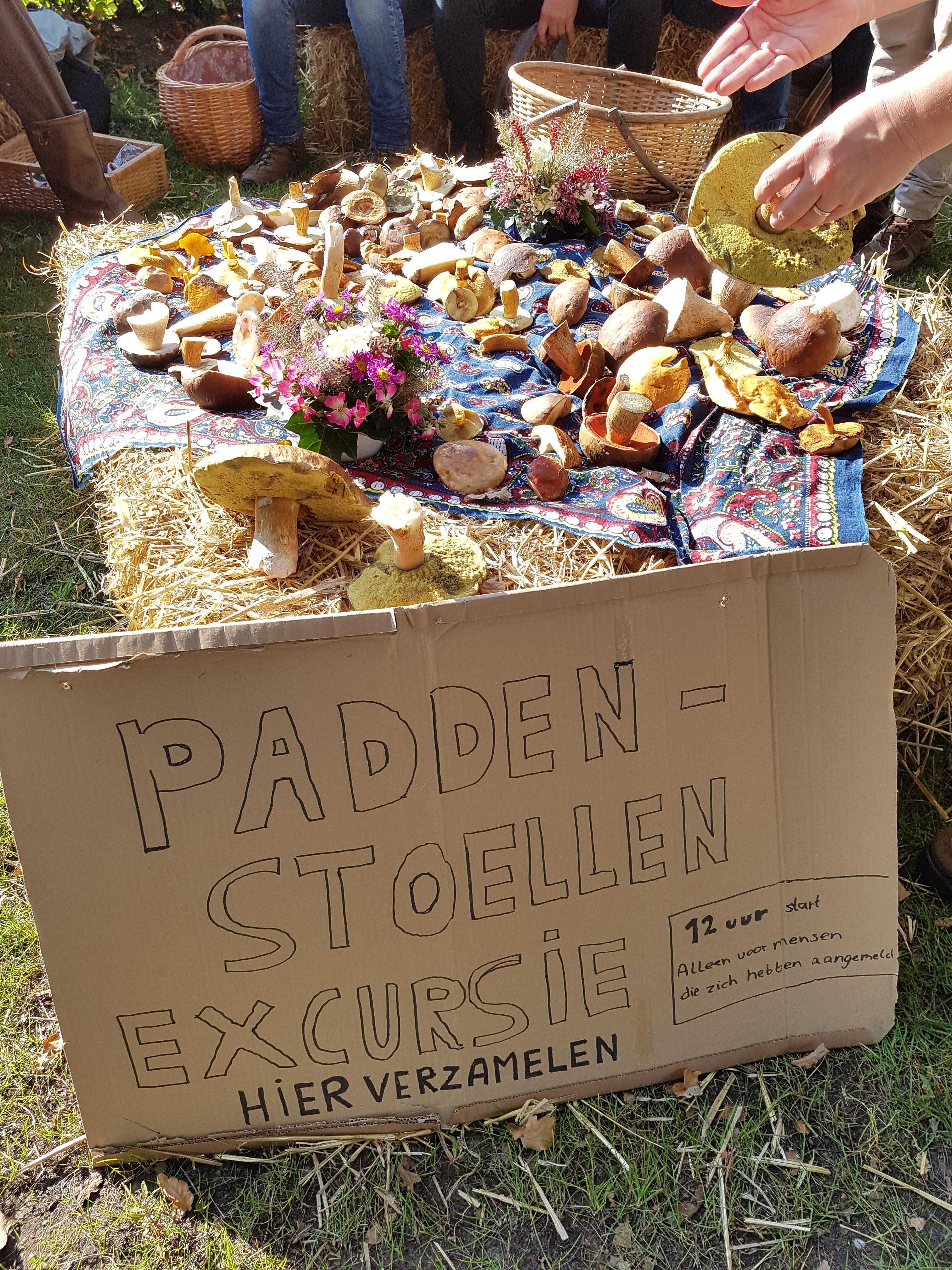 Eetbare Paddenstoelen excursie Oogstfeest Meppen met Roberto Savelberg